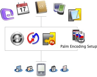 Marks/Space Notebook, Mark/Space MemoPad, Address Book, iCal, Palm Desktop, Microsoft Entourage - iSync, HotSync, Mark/Space Missing Sync for Palm OS + Palm Encoding Setup - Palm